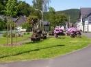 Alertshausen im Sommer