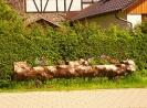 Alertshausen im Sommer_5