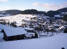 Alertshausen im Winter_10