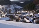 Alertshausen im Winter_11