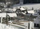 Alertshausen im Winter_14