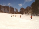 Alertshausen im Winter_6